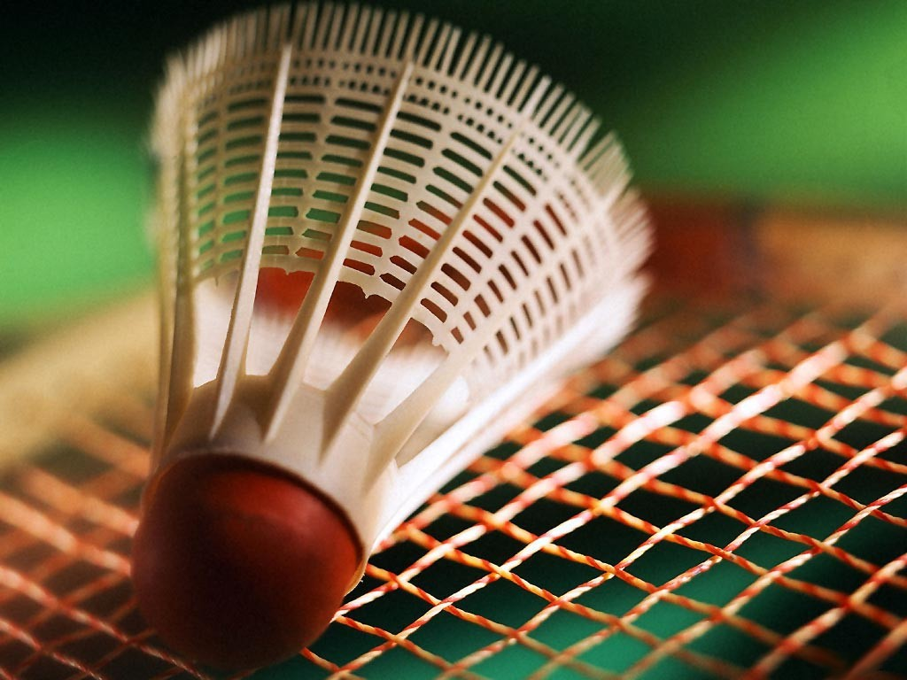 http://mptcellieu.free.fr/images/Badminton/badminton1.jpg